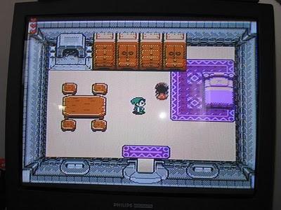 Link's Awakening Pirate screenshot