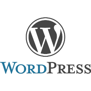 Plugin Wordpress : installer une newsletter sur son blog 6