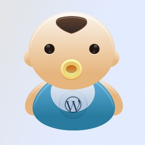 theme enfant wordpress