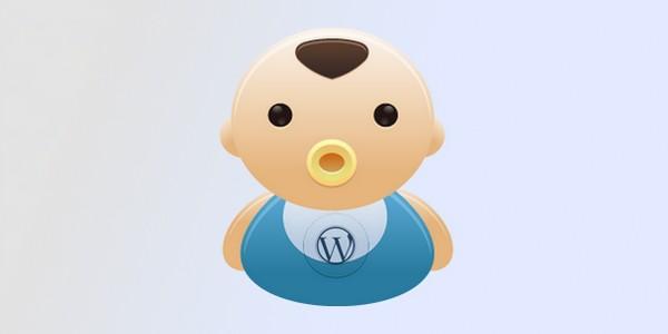 theme enfant wordpress
