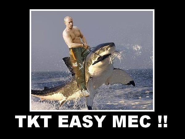 meme poutine shark